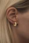 2for1 inside gold Ear